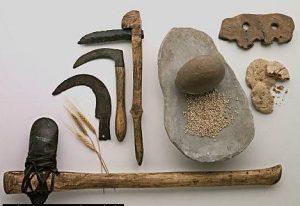 Origen-pan-prehistoria